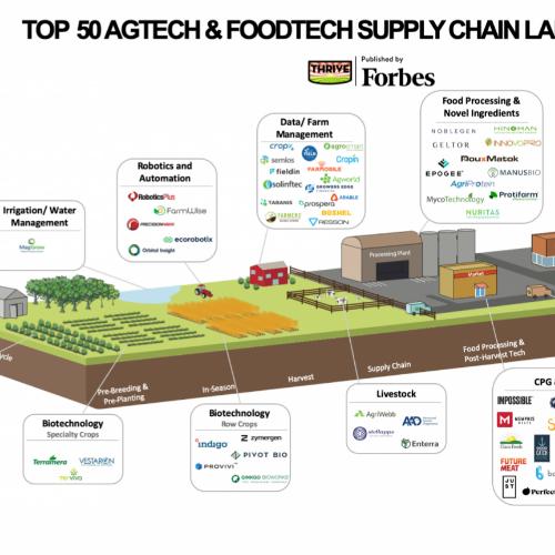50 meilleures startup de l'AgTech : ecoRobotix référencée par Forbes