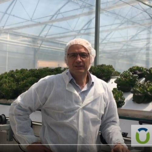 Combagroup, une startup qui permet de produire des denrées sans pesticides, locales et fraiches