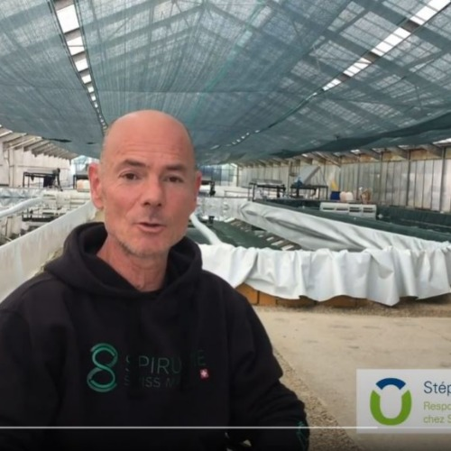 Parmi les nouveaux aliments en vogue, présentation de la spiruline, une microalgue aux multiples vertus, cultivée par Spiruline Swiss