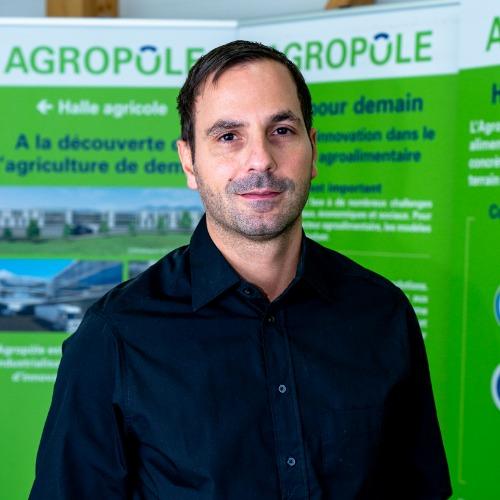 Daniele Raffaele
